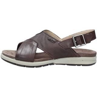 Sandále IgI CO  1129122