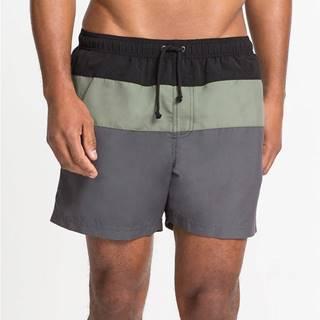 Pánske šortky na kúpanie