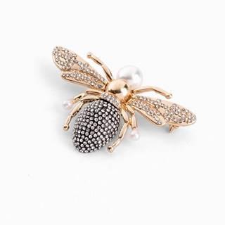 Brošňa Hmyz