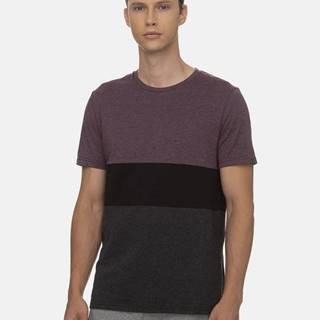 Fialovo-šedé pánske tričko Ragwear
